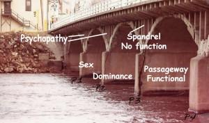 Psychopathy as a spandrel