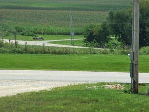 Driveway photo sized