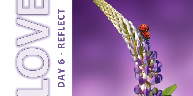 Self-Love and Healing Journey Day 6: REFLECT