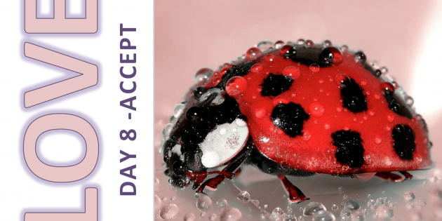 Self-Love and Healing Journey Day 8: ACCEPT