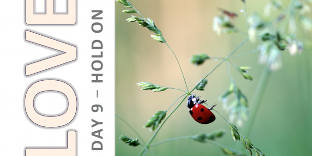 Self-Love and Healing Journey Day 9: HOLD ON