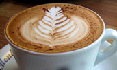 cappuccino queen crop